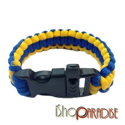 ca005blueandyellow.jpg